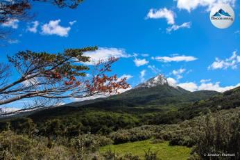 cerro-guanaco